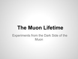 dark_side_of_the_muon.pptx