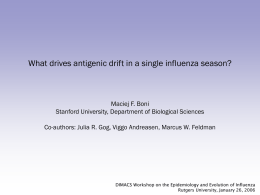 What Drives Antigenic Drift in Single Influenza Season?