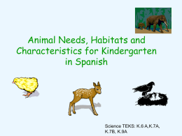 Animals interactive spanish use PPT Kinder.ppt