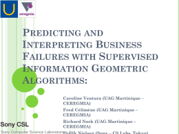 Predicting and Interpreting Business Failures with Supervised Information Geometric Algorithms
