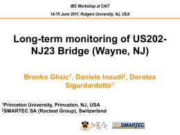 Long-Term Monitoring of the IBS Bridge,