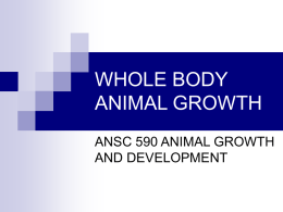 Whole Body Animal Growth