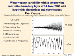 Water vapour variability within the growing convective boundary layer of 14 June 2002 with large eddy simulations and observations (Couvreux)